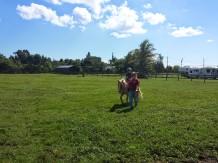 redland riding academy 3